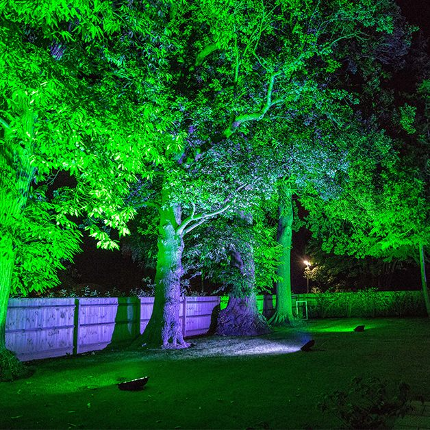 50th birthday party planners cobham outdoor lighting