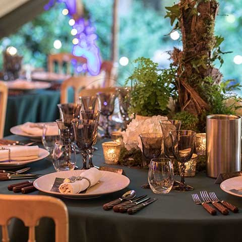 Midsummer nights dream themed party table decor